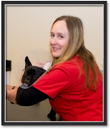 Emergency Veterinary Care